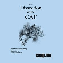 Dissection of the Cat Manual