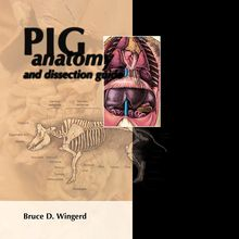 Pig Anatomy and Dissection Guide
