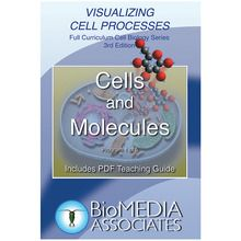 Visualizing Cell Processes: Cells and Molecules DVD