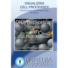 Visualizing Cell Processes: DNA Replication, Mitosis, and Cellular Reproduction DVD