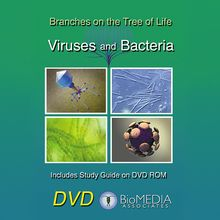 Branches on the Tree of Life: Viruses & Bacteria DVD