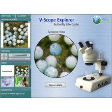 V-Scope Explorer: Butterfly Life Cycle (1-Year Single Teacher License)
