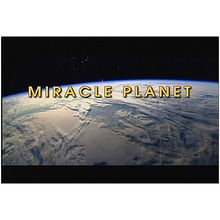 Ambrose Streaming Video: Miracle Planet (1-Year Schoolwide Subscription)