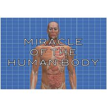 Ambrose Streaming Video: Miracle of the Human Body (1-Year Schoolwide Subscription)