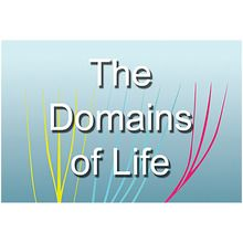 BioMEDIA Video: The Domains of Life: Life's Three Great Branches (1-Year Schoolwide Subscription)