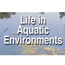 BioMEDIA Video: Life in Aquatic Environments (1-Year Schoolwide Subscription)