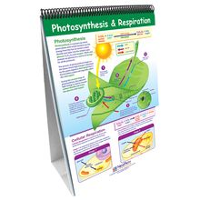 Curriculum Mastery Earth Science Flip Chart Set, Grades 6-8