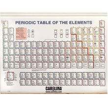 Periodic Table of the Elements, with Spring Roller