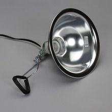 Dimmable Clamp Lamp