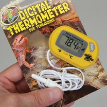 Digital Terrarium/Aquarium Thermometer