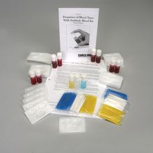 Carolina™ Frequency of Synthetic Blood Types Kit