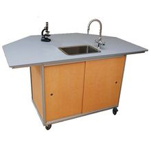 Mobile Science Lab Workstation, Gray