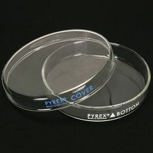 Pyrex®, Petri Culture Dish, 60 x 15 mm