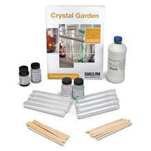 Carolina Chemonstrations®: Crystal Garden Kit