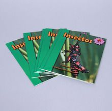 Insectos (Insects), Set of 6