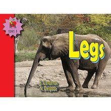 Legs Big Book, English