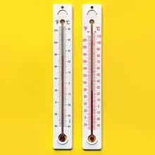 Student Thermometer High Range