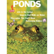 KIDS DISCOVER: Ponds, Pack of 8
