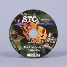 Teacher's Tools CD-ROM: The Life Cycle of Butterflies