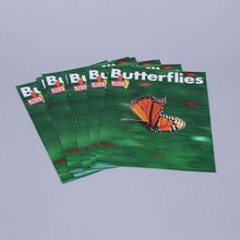 KIDS DISCOVER: Butterflies, Pack of 8