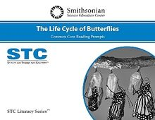 STC Literacy Series™ The Life Cycle of Butterflies Common Core Reading Prompts, School License