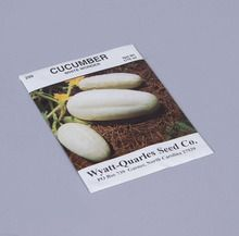 Seed, Cucumber, Pack of 75