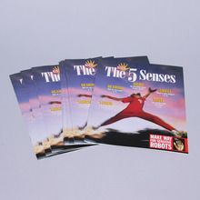 KIDS DISCOVER: The 5 Senses, Pack of 8
