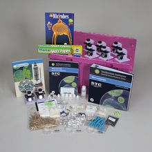 STC Program: Microworlds Two-Use Unit Kit, 3rd Edition