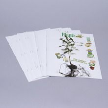 KIDS DISCOVER: Plants, Pack of 8