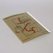 Transparencies, Set of 4 (