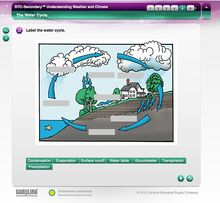 STC Interactive Whiteboard Activities for Grades 6-8, Building Package (5-Year License)