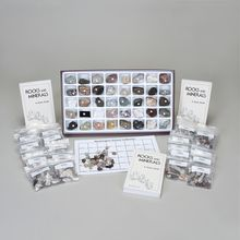 Washington School Collection Chart Kit
