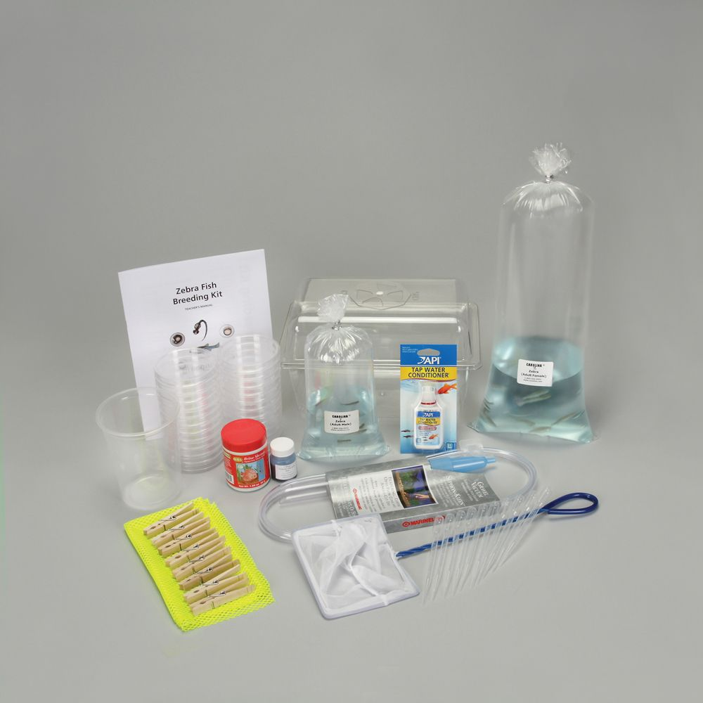 Zebrafish Breeding Kit
