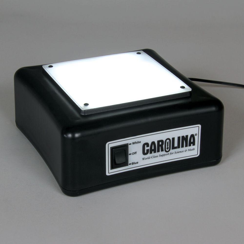 carolina led light box. Black Bedroom Furniture Sets. Home Design Ideas