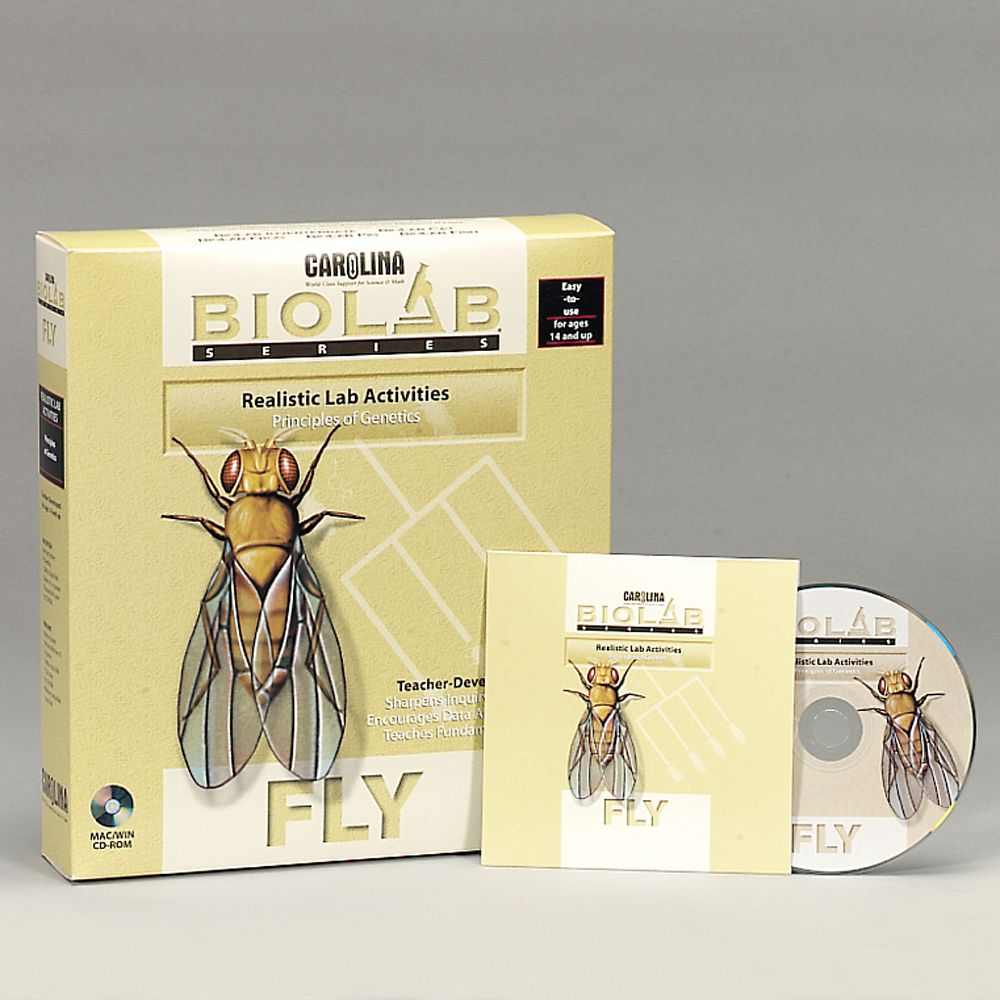 ap bio lab fruit flies Drosophila, the common fruit fly, is an ideal organism for studying basic genetics  and the laws of heredity  apterous (ap), 2 (lm1119) $835 qty: add to cart.