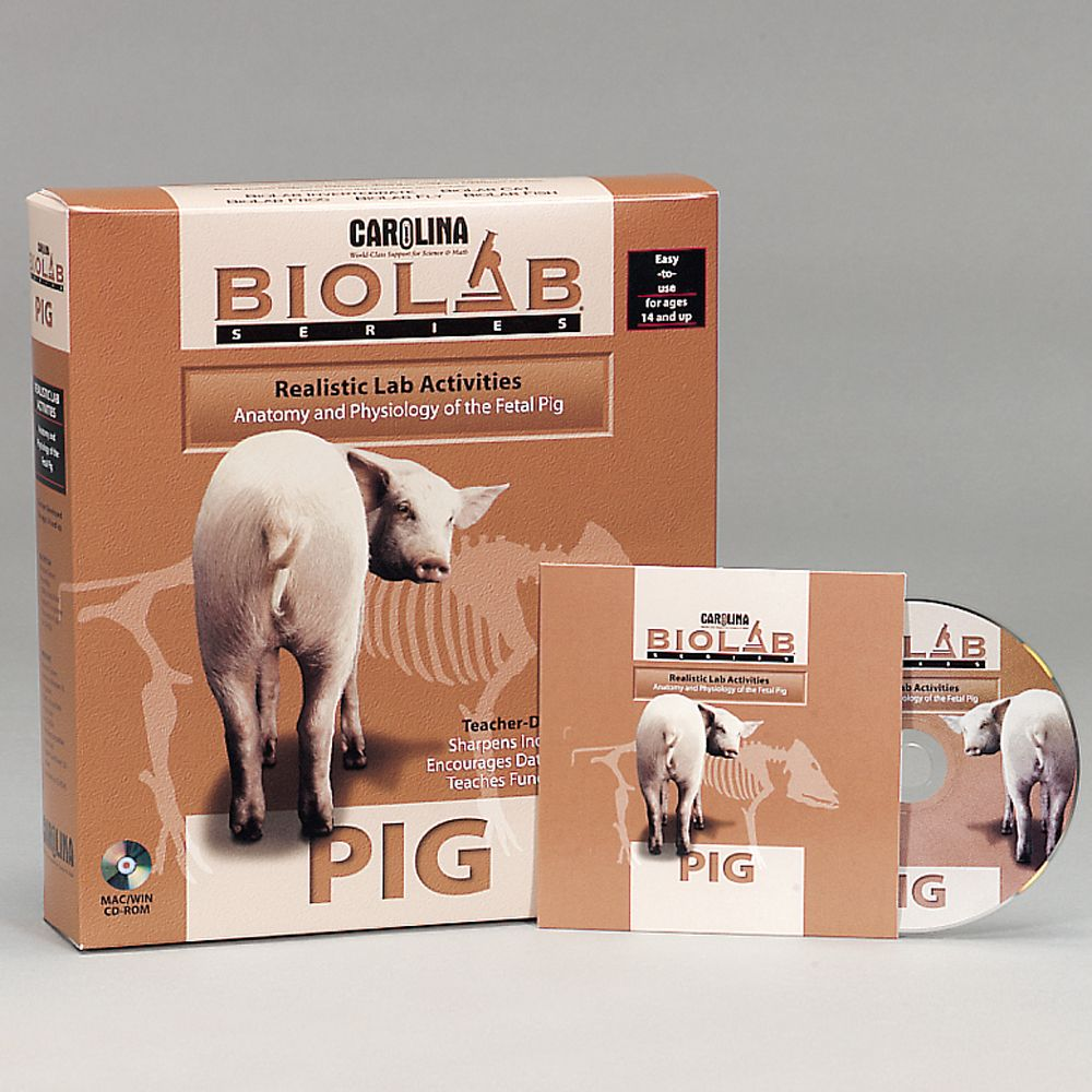 bio lab Bio laboratories pte ltd 10 ubi crescent, lobby a #06-02 ubi techpark singapore 408564 t: (65) 6713-5288   f: (65) 6846-7477 e: biolab@biolabcom sg.