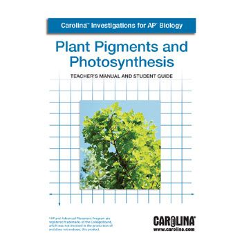 plant pigment and photosynthesis essay Photosynthetic pigments are found in autotrophs, which are organisms that use light energy to make their own food in a process called photosynthesis some examples of autotrophs are plants, algae, and cyanobacteria [ (speer) ].