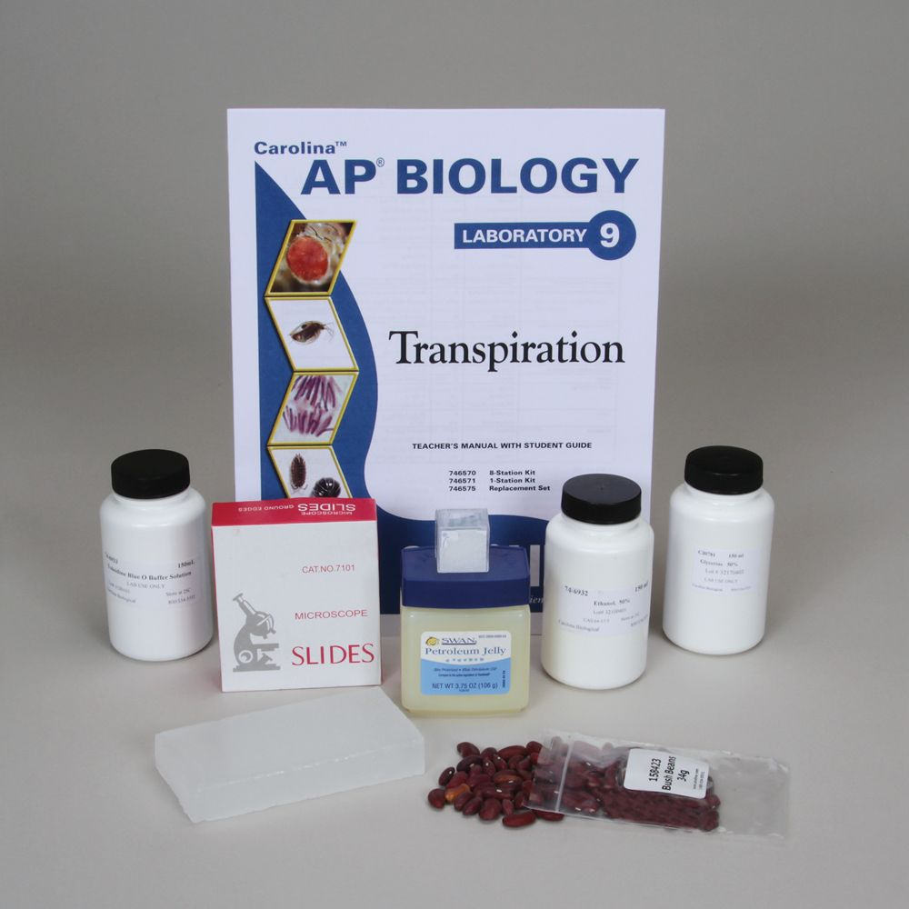 ap biology lab 9 transpiration Learn ap lab 9 transpiration with free interactive flashcards choose from 500 different sets of ap lab 9 transpiration flashcards on quizlet.
