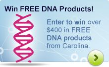 Enter to win over $400 in free DNA products from Carolina!
