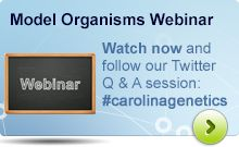 Watch NOW and follow our interactive Q & A session on Twitter #carolinagenetics