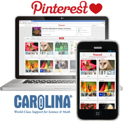 Enter in your board in Carolina's Pinterest Contest!