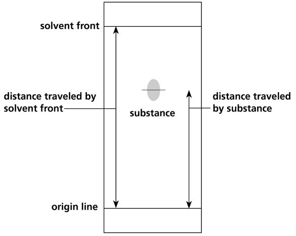 Figure 1 Chromatography results.